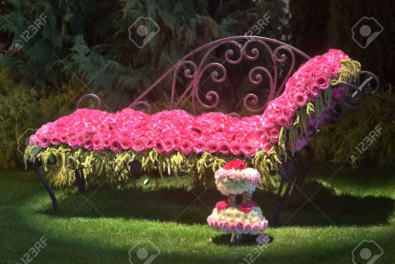 Bed Of Roses Stock Photo Picture And Royalty Free Image Image