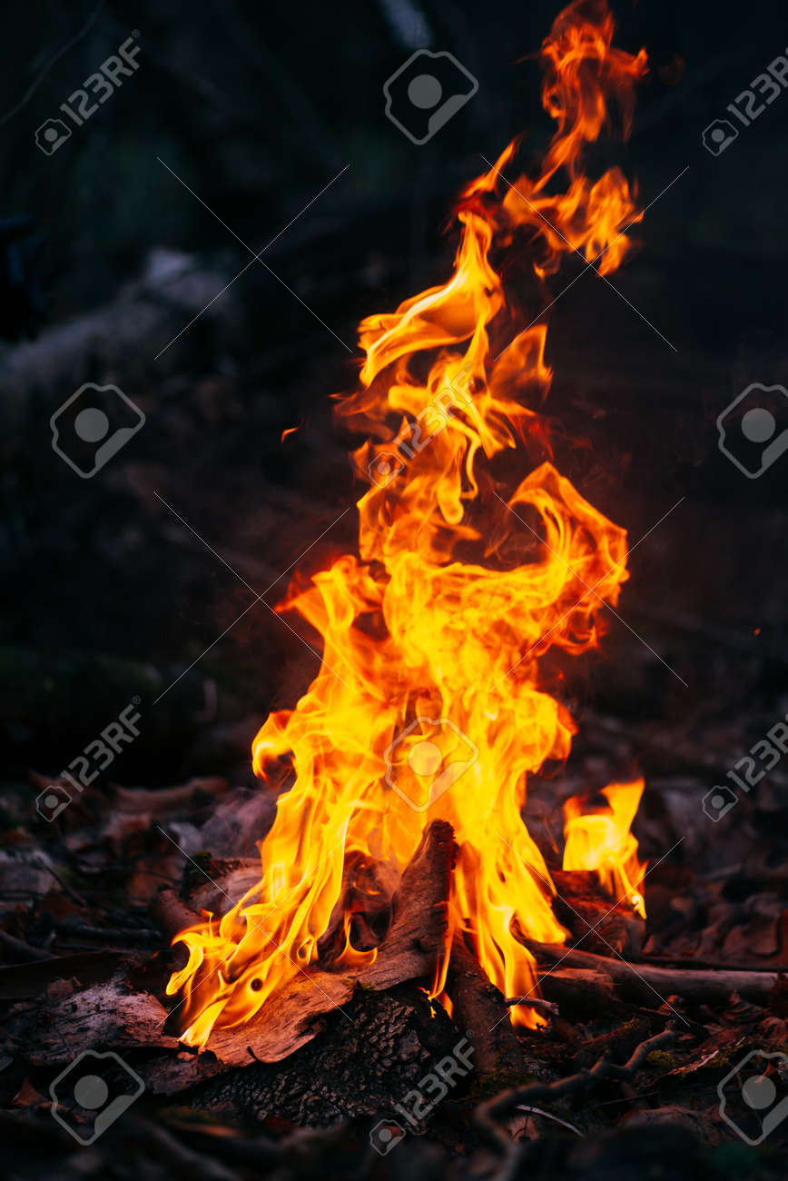Burning wood at evening in the forest. Campfire at touristic camp at nature. Barbeque and cooking outdoor fresh air. Flame and fire sparks on dark abstract background. Concept of safety and responsibility to nature. - 146618436