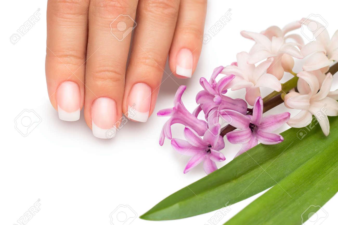 Professional manicure with spring flowers isolatedon white background Stock Photo - 15830314