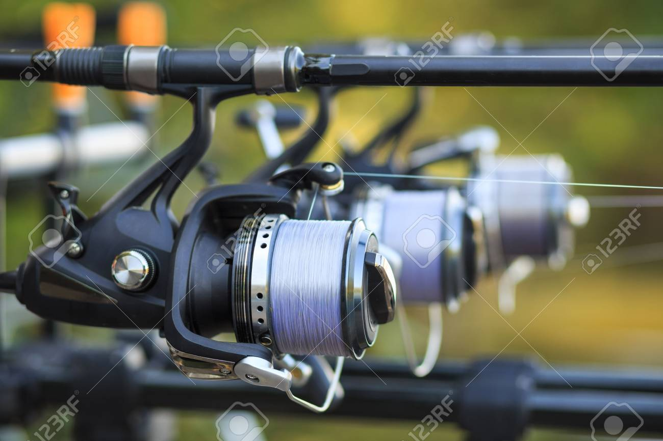 Three fishing rods with professional reel set up on support. - 56198540