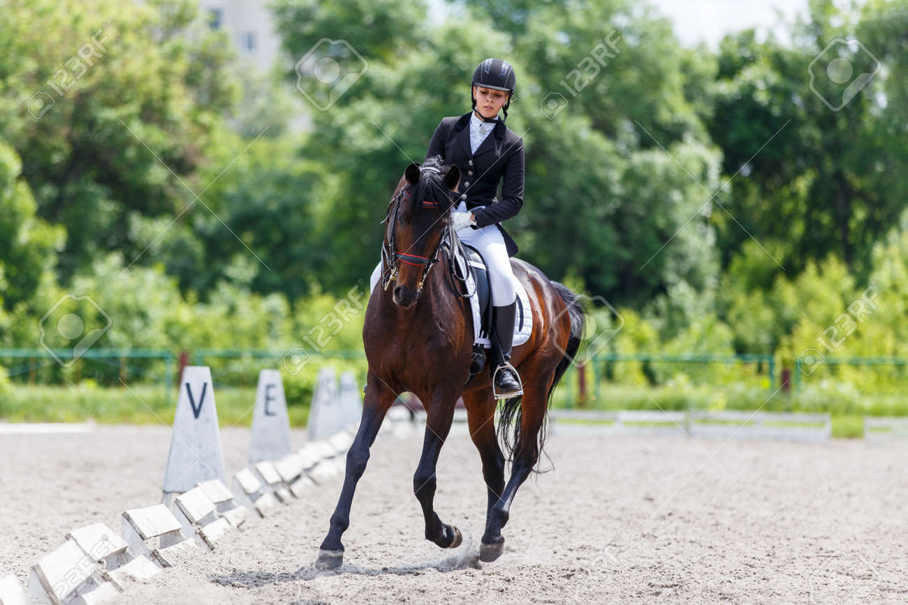 Young woman riding horse on dressage advanced test - 131226933