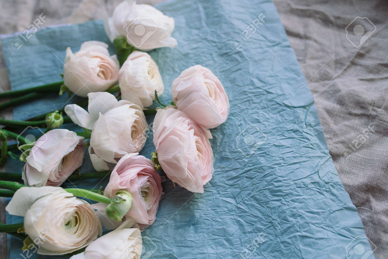 Pale Pink And White Ranunculus Bouquet On A Blue Background Stock