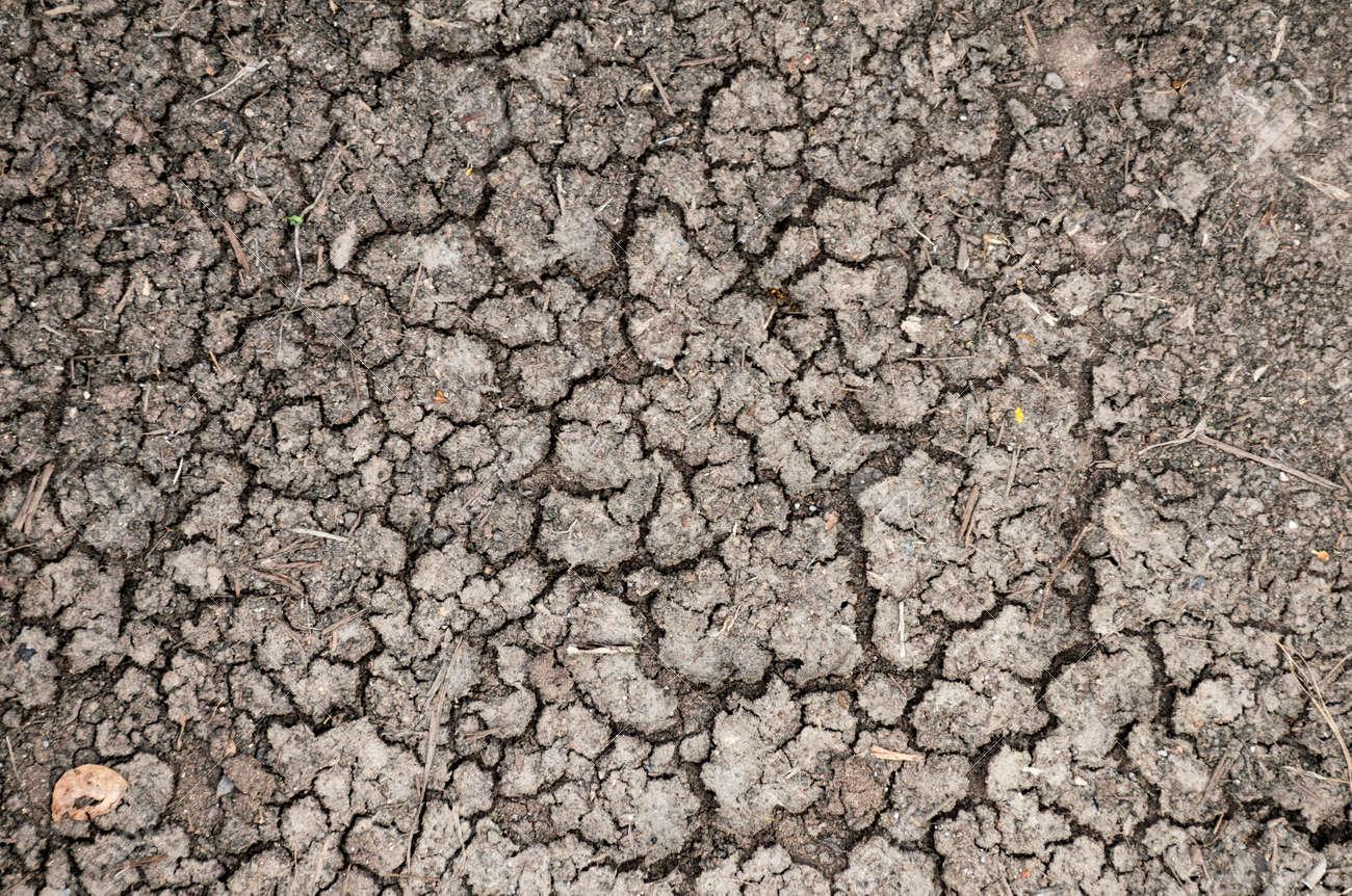 Fissure Ou Seche Sol Terre Texture De Fond Aridite La Desolation Et Le Concept De La Secheresse Banque D Images Et Photos Libres De Droits Image 65042819