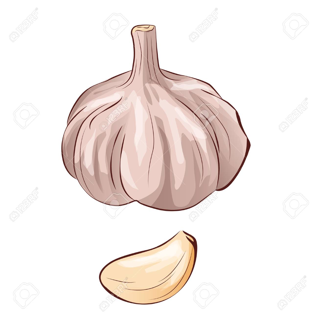 garlic in flat cartoon style isolated object vegetable from royalty free cliparts vectors and stock illustration image 87205133 garlic in flat cartoon style isolated object vegetable from