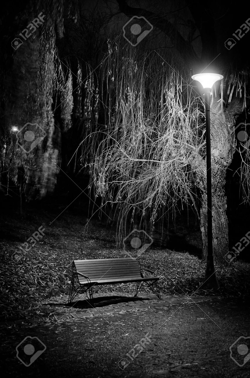 A lonely bench black and white picture Stock Photo - 14701304