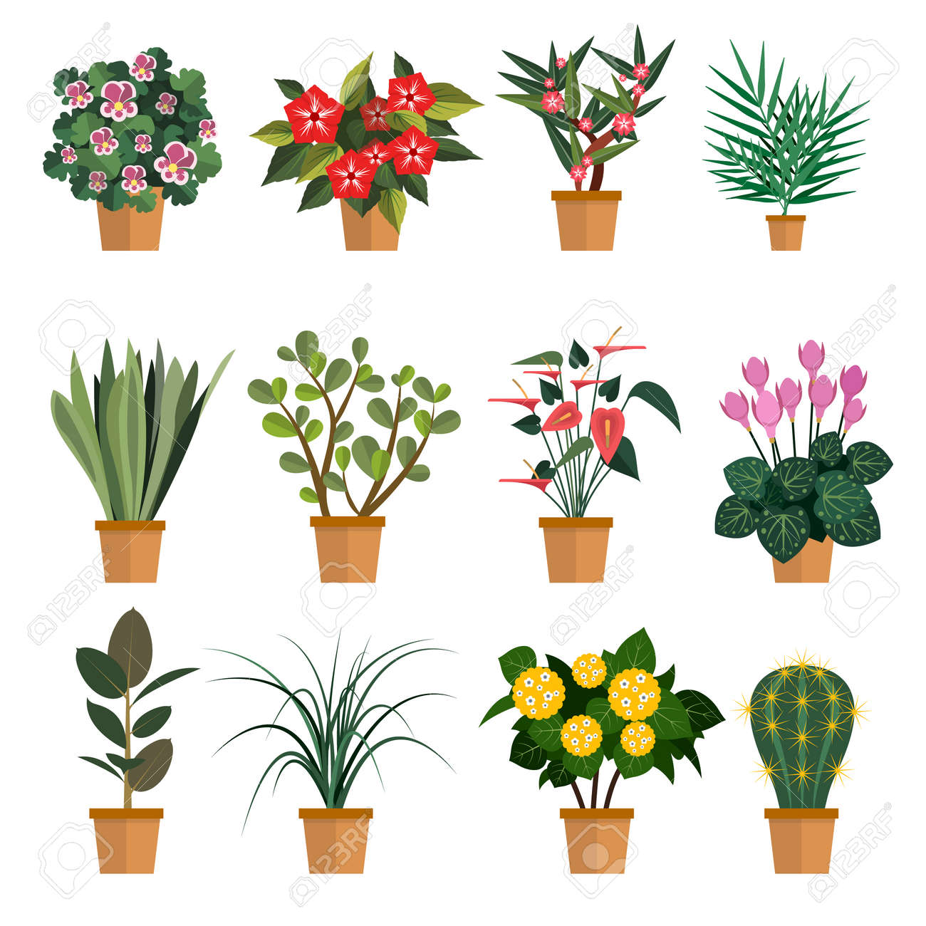 Vector Set Of Flowers Illustration With Different Types Of Pot