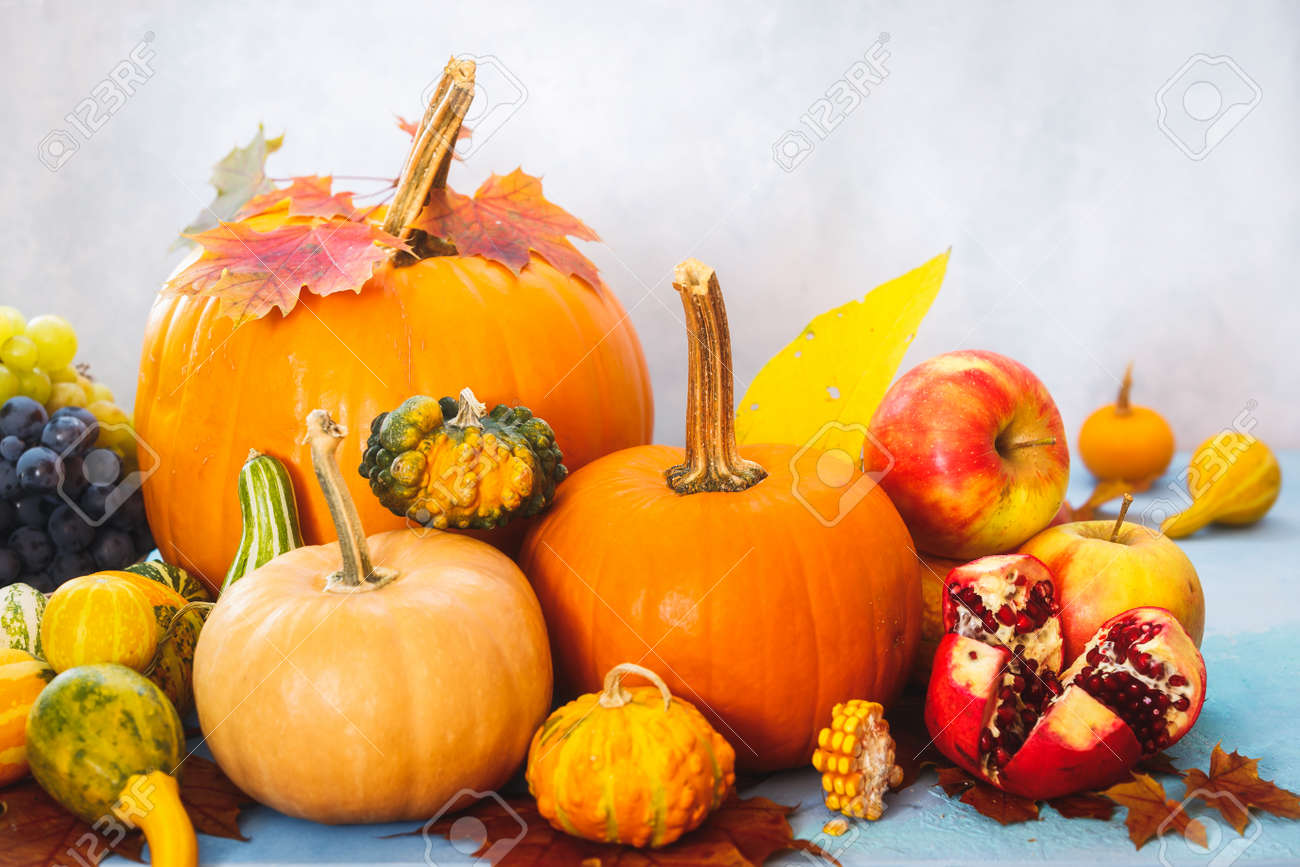 Autumn still life with edible and ornamental pumpkins and gourds, grapes, apple and pomegranate, selective focus - 132011569