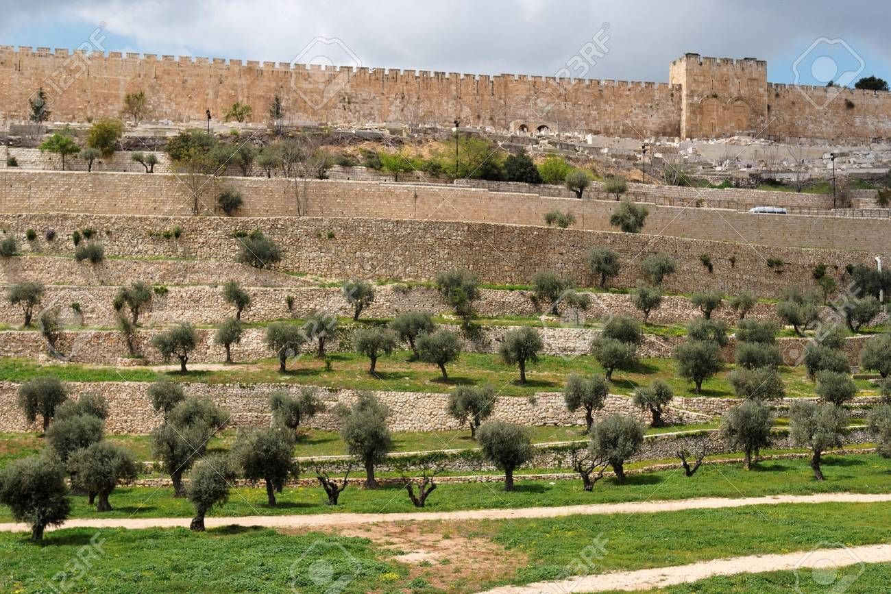 Terraces of the Kidron Valley and the the wall of the Old City in Jerusalem Stock Photo - 10086084