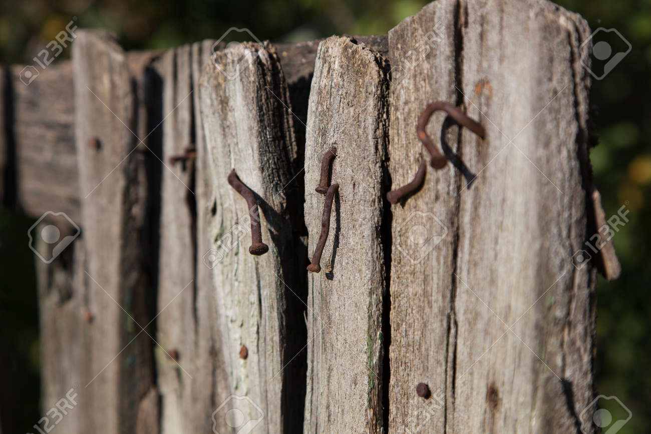 Part Of The Old Worn Out Wooden Fence With Rusty Nails Sticking
