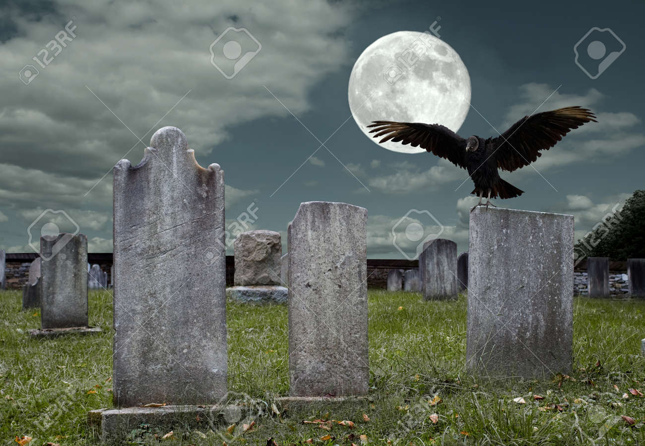 An old graveyard and vulture in the light of the full moon Stock Photo - 15421056