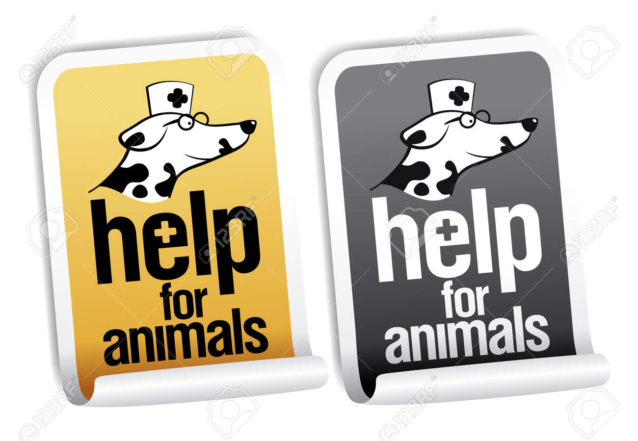 Help for animals, first aid stickers set. Stock Vector - 14334722