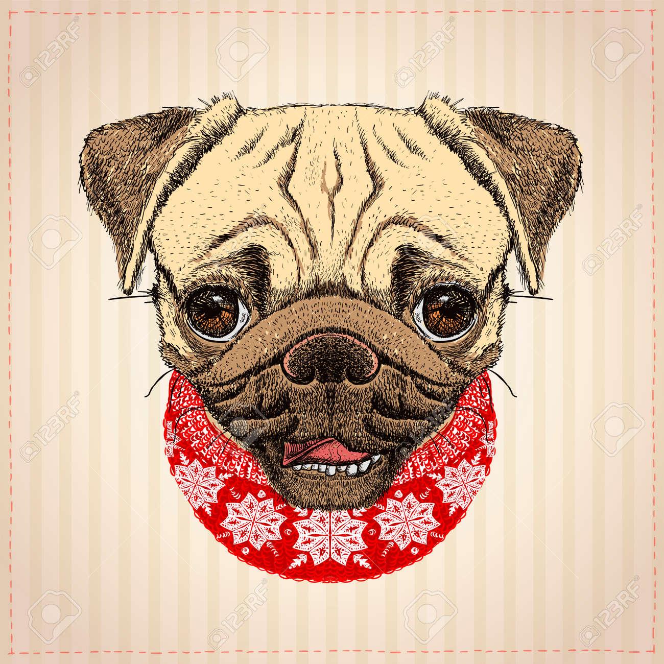 Dog Christmas Card Photo.Pug Dog Christmas Card Hand Drawn Illustration With Cute Pug