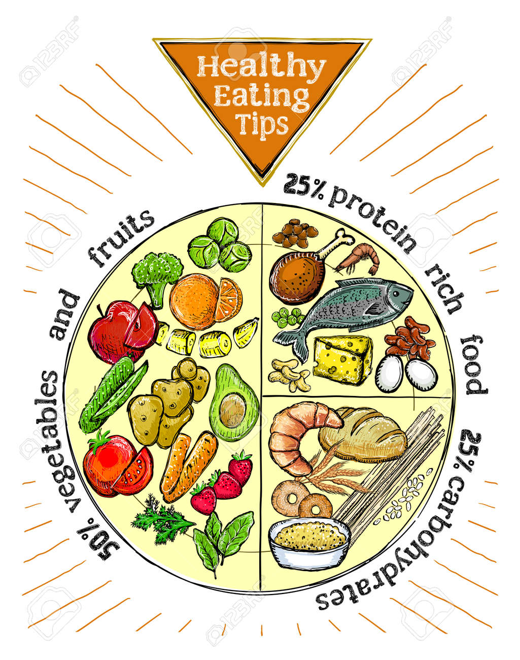 Healthy eating tips plate, proper nutrition proportions, hand drawn vector illustration - 132429102