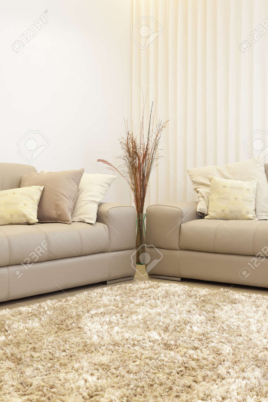 Part Of Luxury Modern Living Room Stock Photo - 19755489