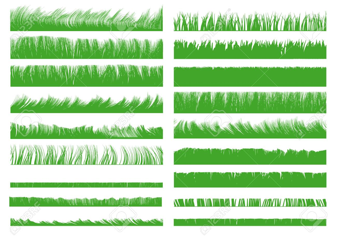 Set with realistic contours of grass. Vector illustration. - 125944279