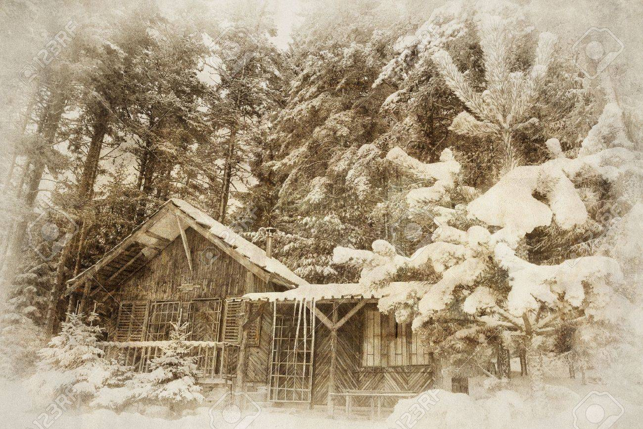 vintage winter landscape with wooden shellter in deep forest Stock Photo - 16260318