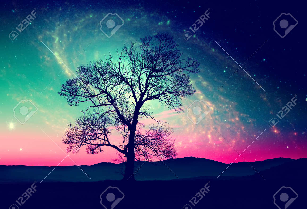red alien landscape with alone tree over the night sky with many stars - elements of this image are furnished by NASA Stock Photo - 43320772
