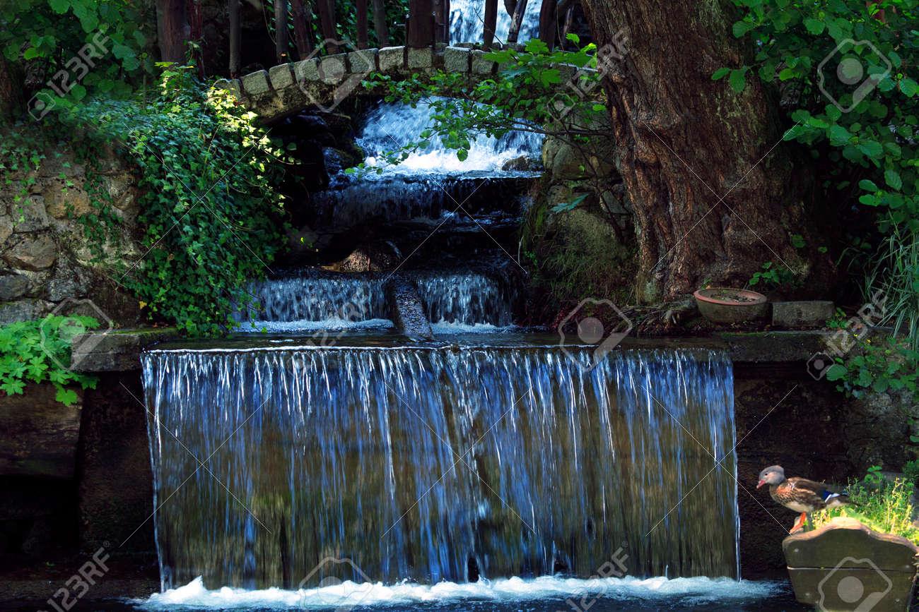 Garten Wasserfall Und Kleine Steinbrucke Lizenzfreie Fotos Bilder