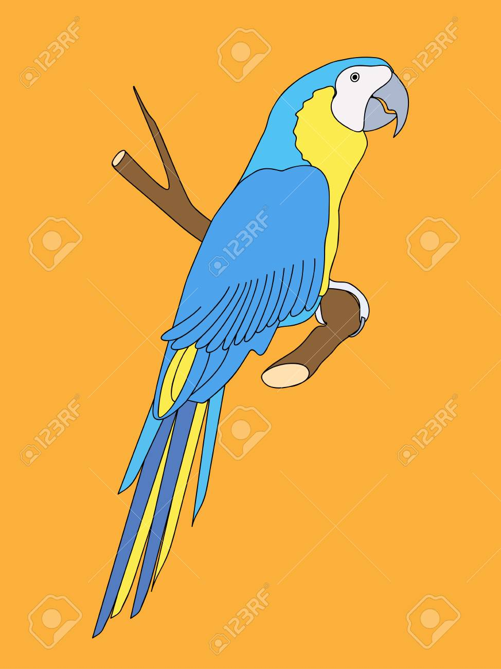 Hand Drawn Realistic Parrot On The Tree For Home Art, Decorate ...