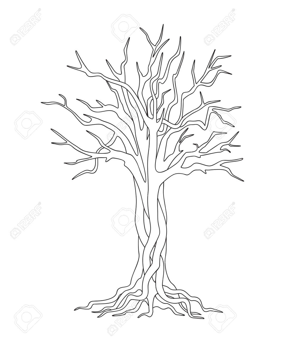 Black And White Outline Illustration With Isolated Tree For Kids