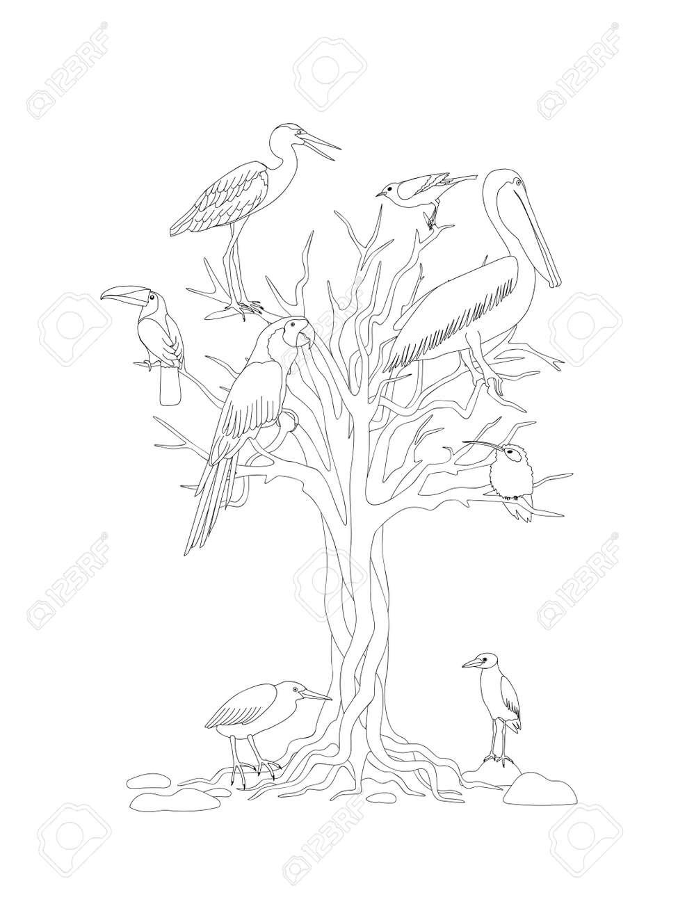 Página Para Colorear Con árboles Y Pájaros Tropicales Para Niños Y ...