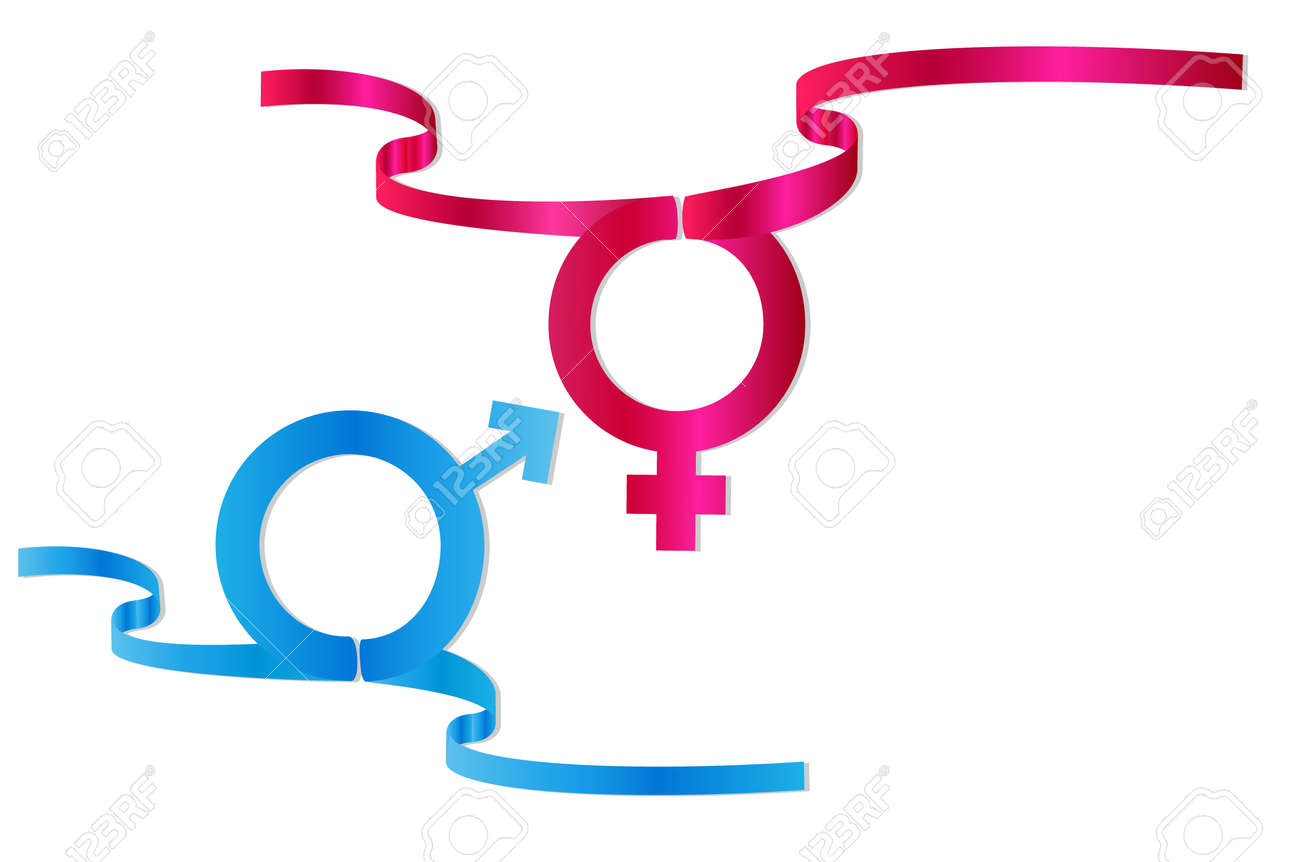 symbol of male and female sex vector illustration Stock Vector - 3962012