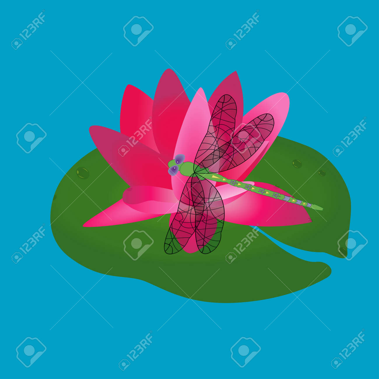 Pink Color Lotus Flower On Leaves Vector Drawing Royalty Free