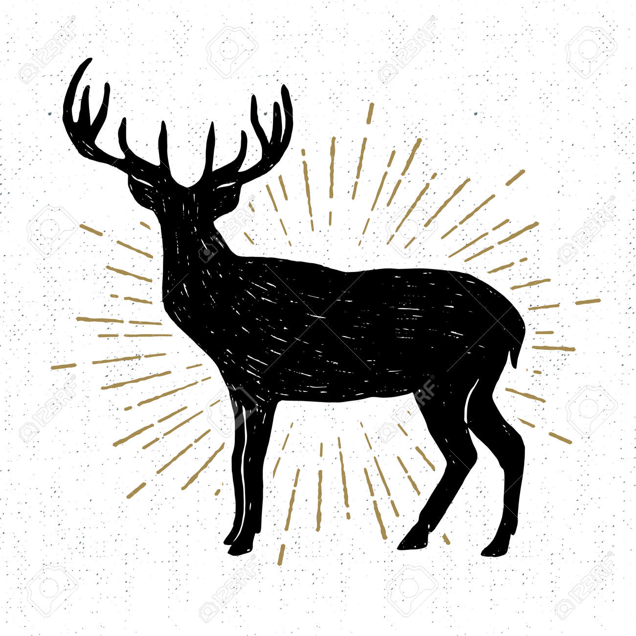 Hand drawn vintage icon with a textured deer vector illustration. - 55803248