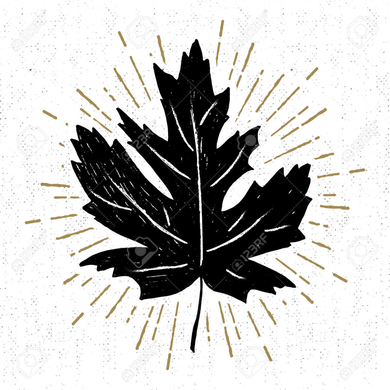 Hand Drawn Icon With A Textured Maple Leaf Vector Illustration