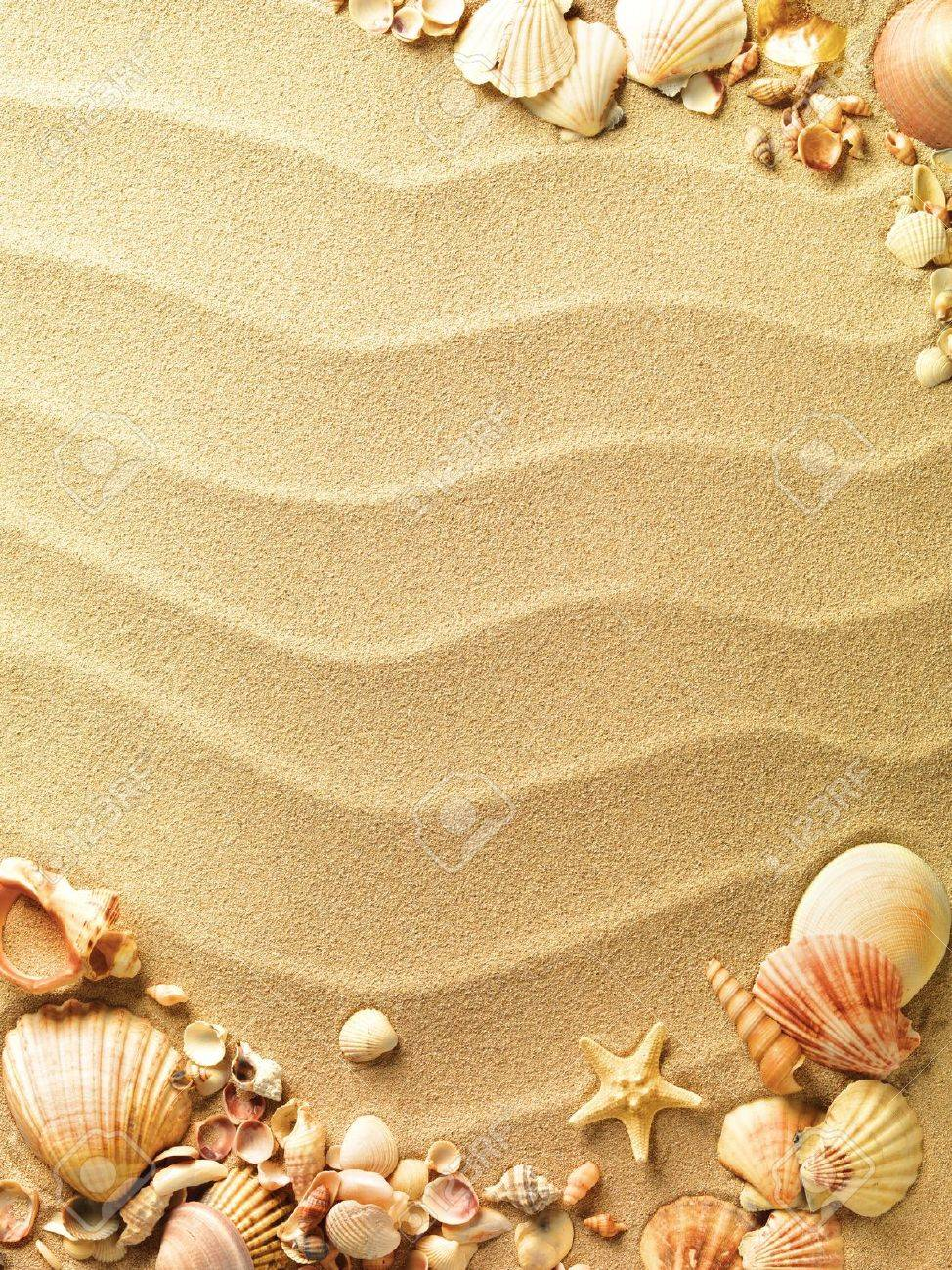sea shells with sand as background Stock Photo - 9822520