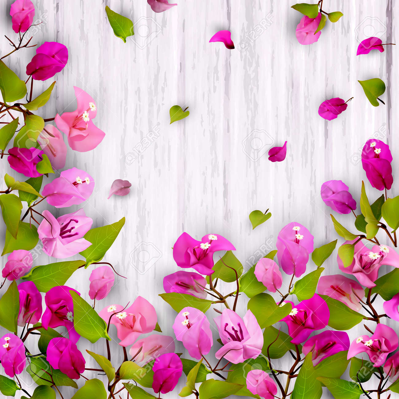 Beautiful Floral Background With Tropical Flowers Bougainvillea