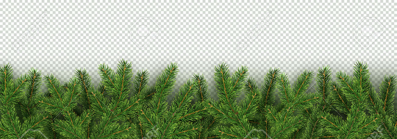 christmas new year winter border with realistic branches of christmas tree xmas element for
