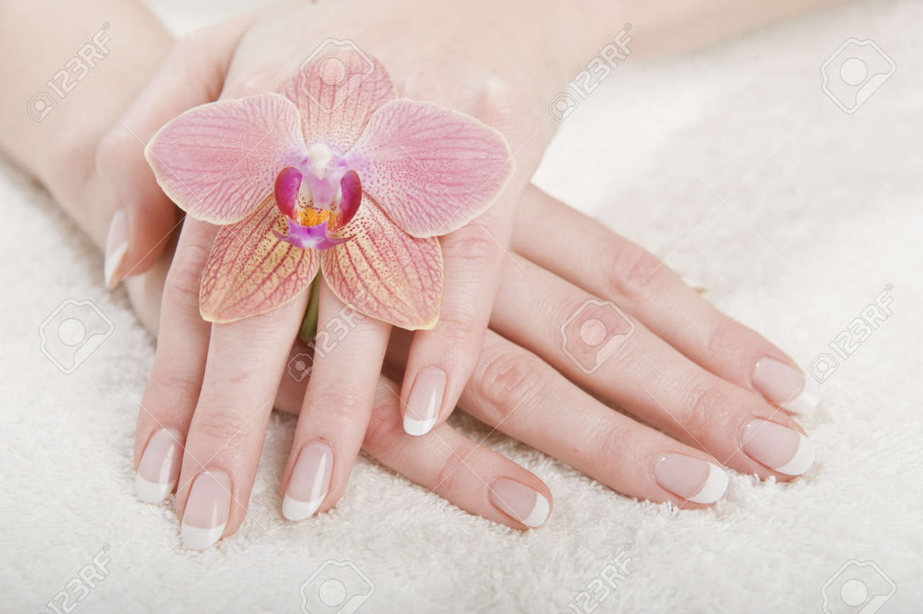 Beautiful hands with perfect french manicure and orchid Stock Photo - 7610005