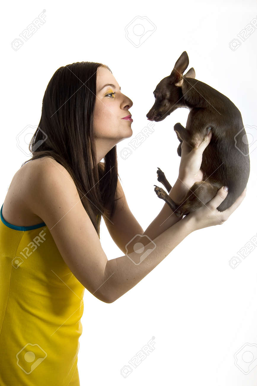 Young pretty beautiful woman holding little toy terrier dog. isolated on white background Stock Photo - 7785675