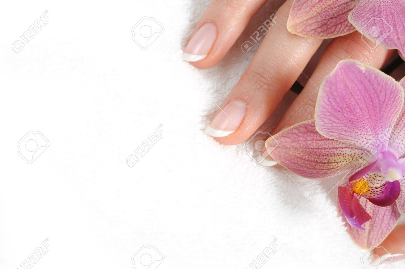 Beautiful hand with perfect nail french manicure and purple orchid flowers. isolated on white background - 8737739