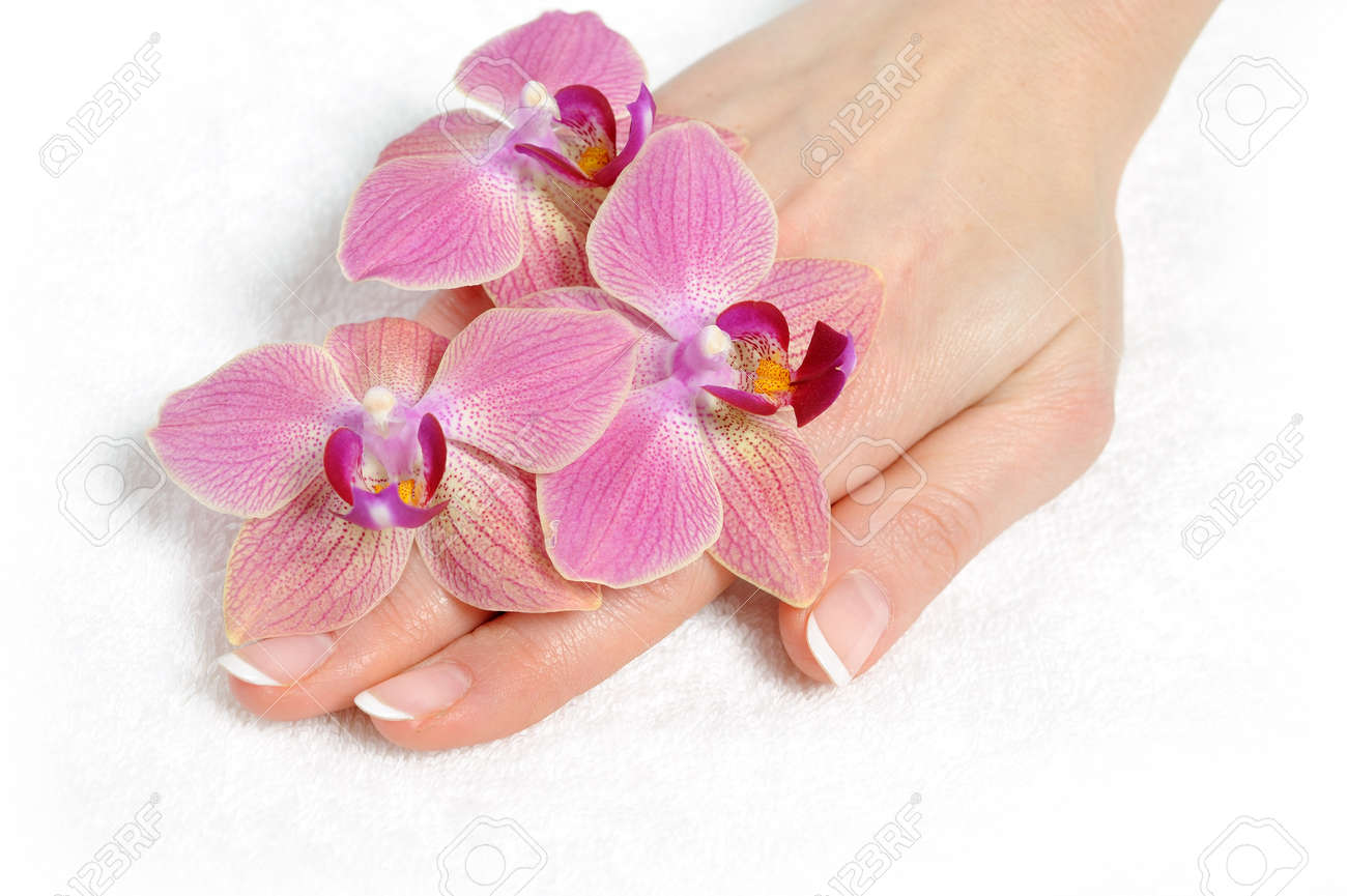 Beautiful hand with perfect nail french manicure and purple orchid flowers. isolated on white background Stock Photo - 8737745