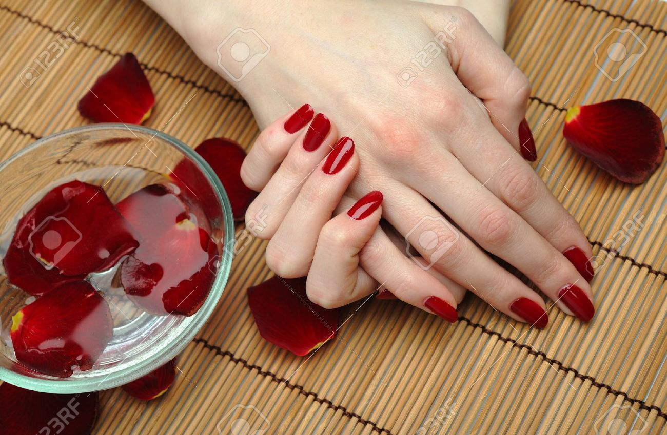 Beautiful hand with perfect nail red manicure and rose petals. - 9277065