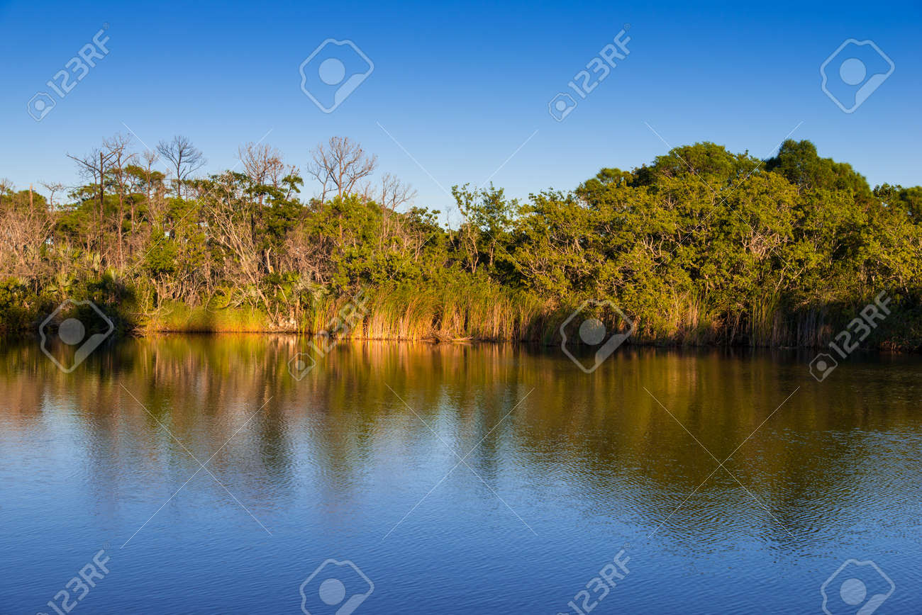 Pond reflecting shoring in late day light Stock Photo - 17486381