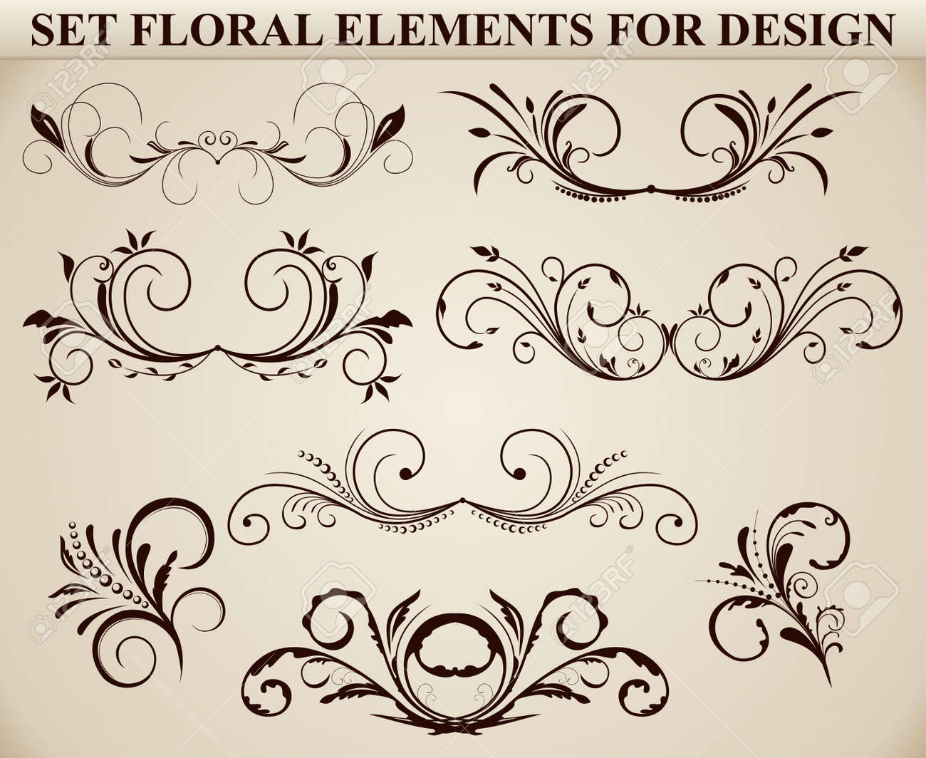 Set of ornate floral elements for design Stock Vector - 7589650