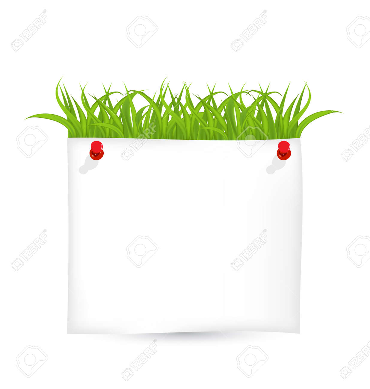 Illustration paper sheet with green grass Stock Photo - 18433835