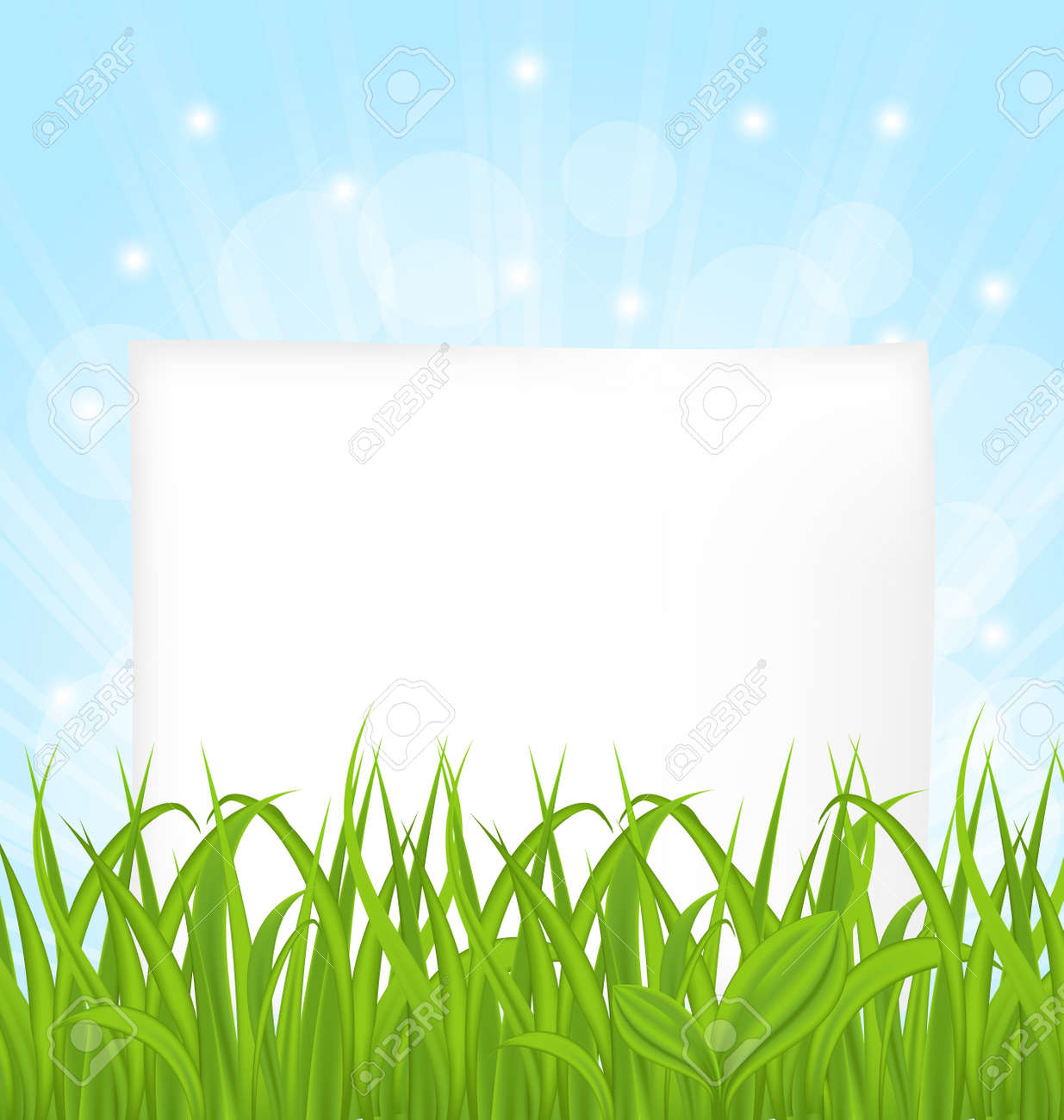 Illustration natural card with green grass and paper sheet Stock Illustration - 18434041
