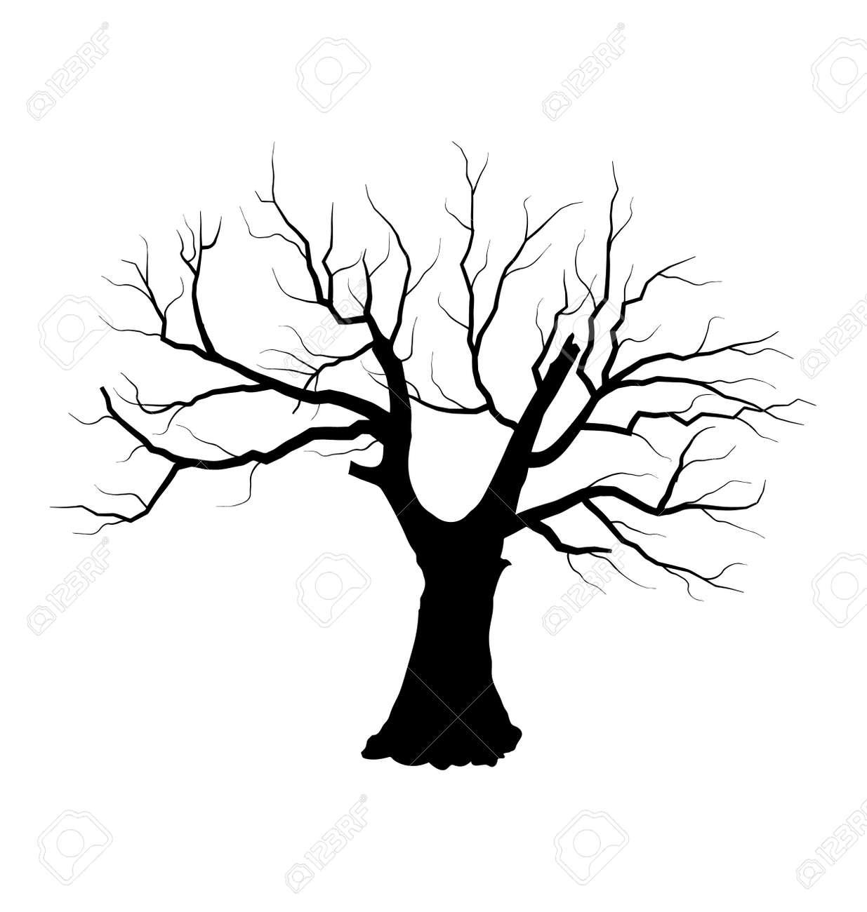 Dibujo Ilustración De árbol Muerto Y Sin Hojas Ilustraciones