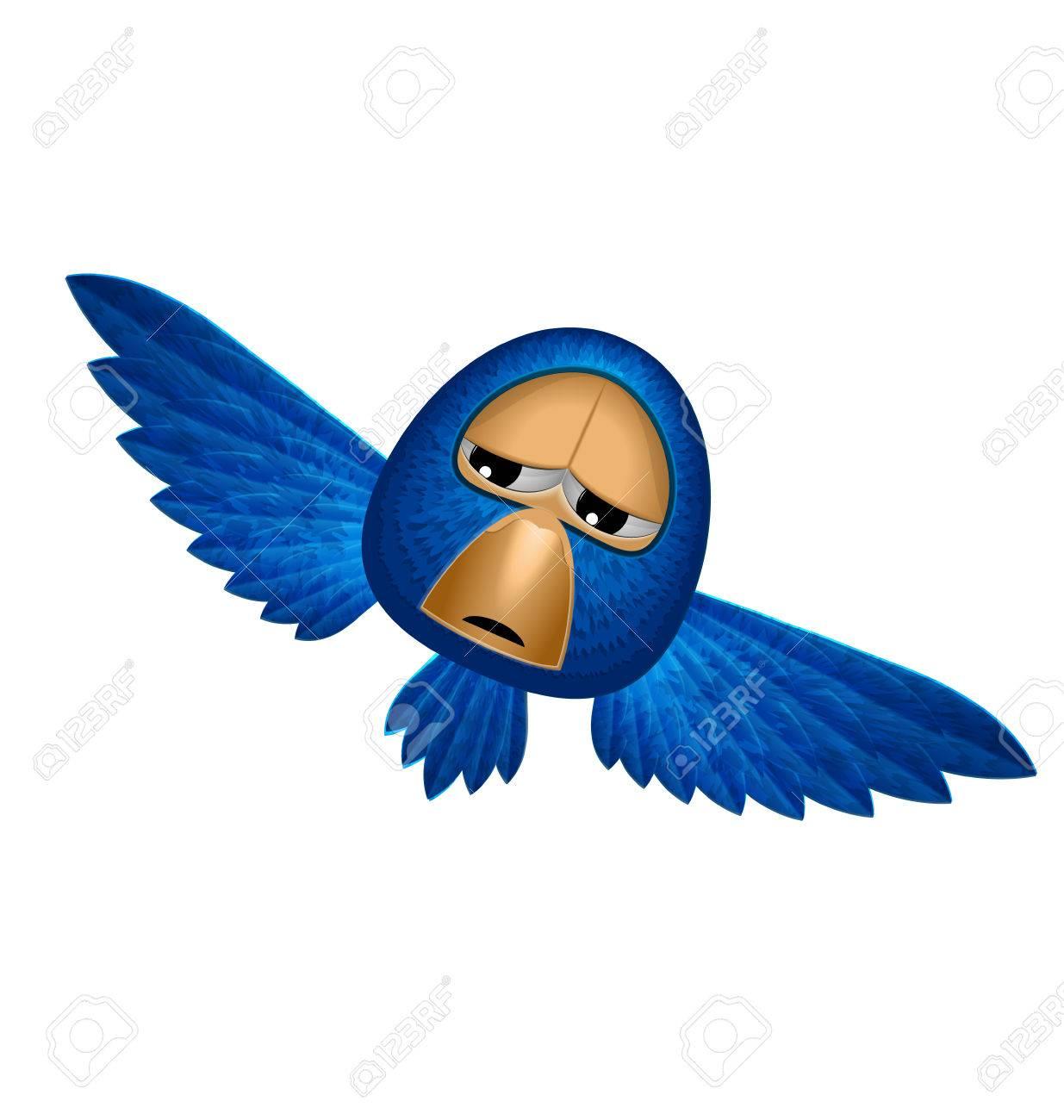 Angry Espectador Azul Pájaro Vuela Y Observar Mira Hacia Abajo Desde ...