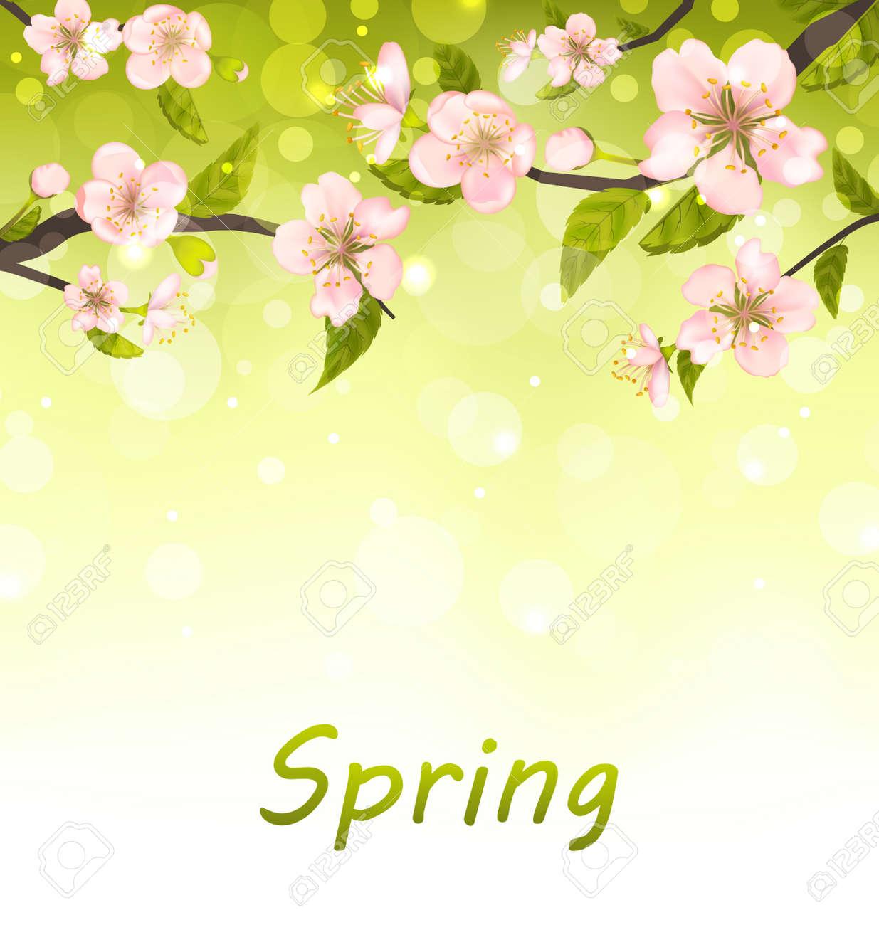 イラストかわいい枝の花桜自然バック グラウンド ラスター の写真