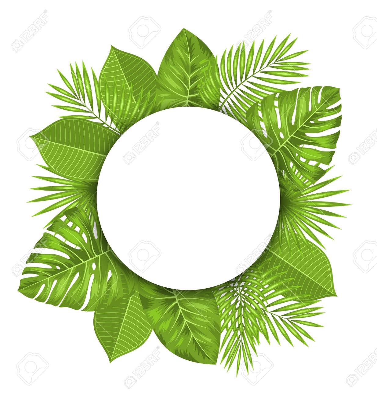 Ilustración Tarjeta Limpia Con Espacio De Texto Y Hojas Verdes Tropicales Trama