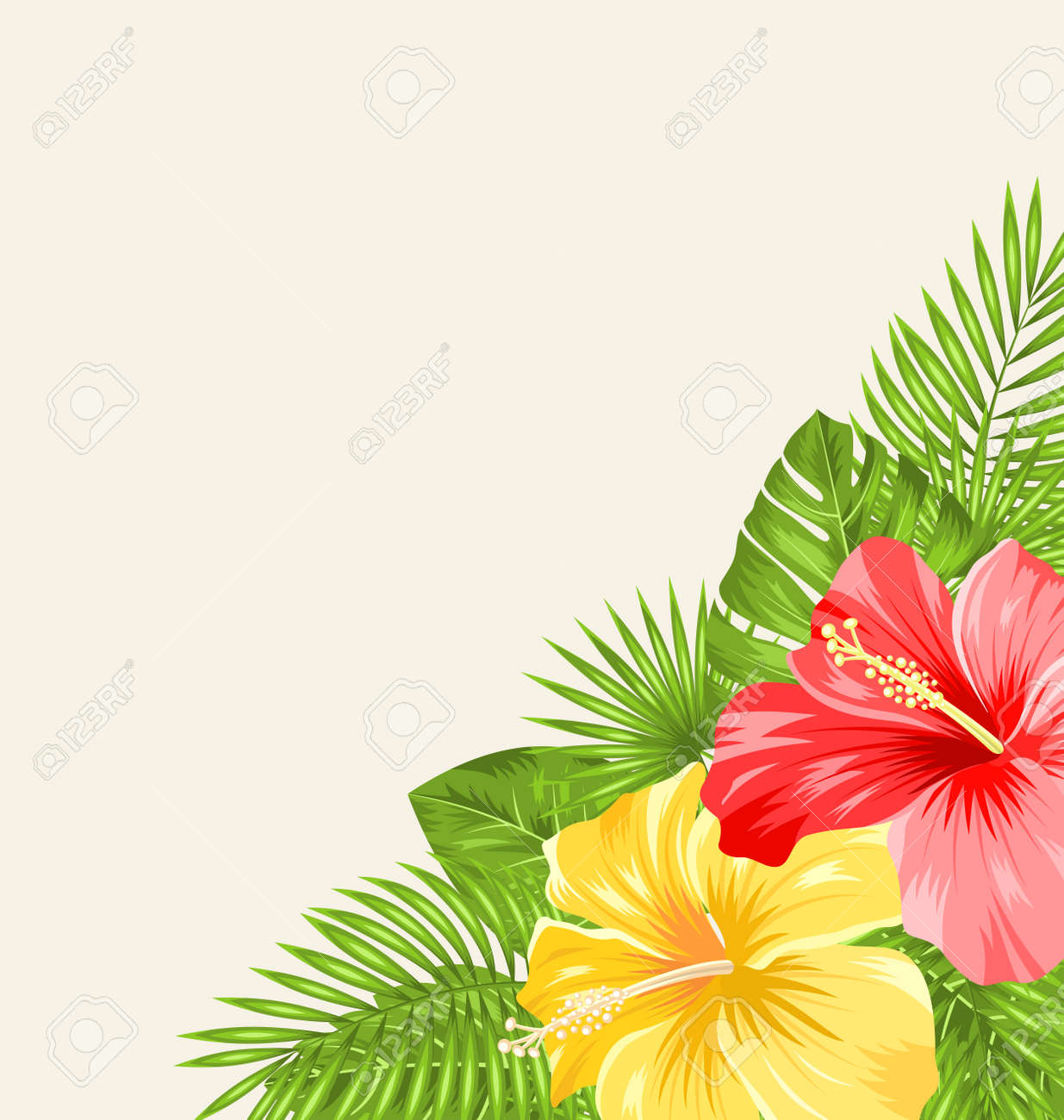 Illustration vintage background with colorful hibiscus flowers illustration vintage background with colorful hibiscus flowers copy space for your text vector stock izmirmasajfo