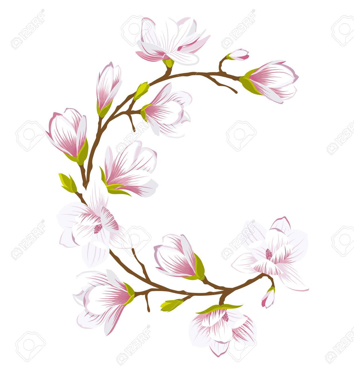 Round Frame Made of Beautiful Magnolia Flowers - 77015600