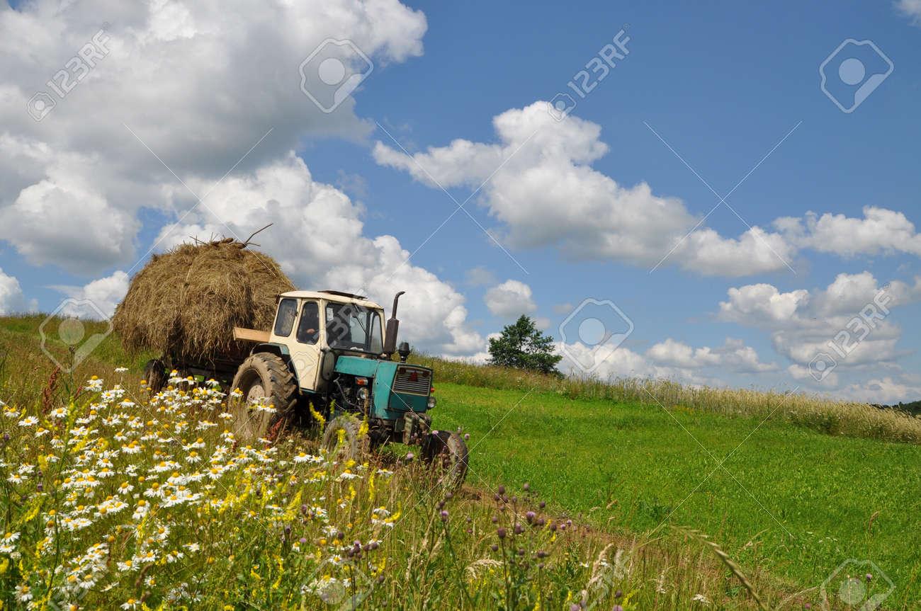 Hay transportation Stock Photo - 9258564