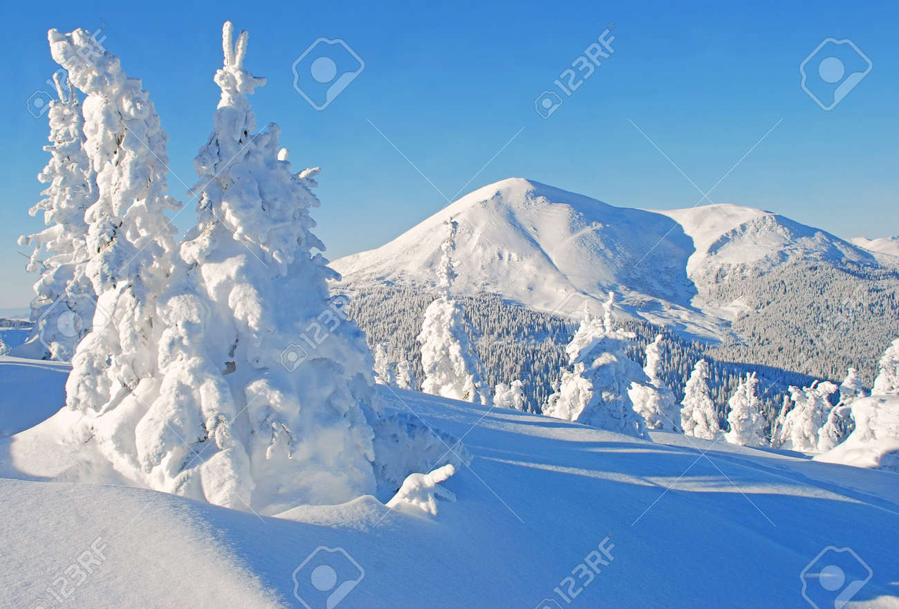 Winter in mountains Stock Photo - 10408464