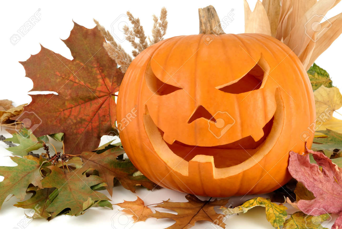 Halloween shot with autumn leaves and a fine Jack-o-Lantern on white background Stock Photo - 7548120
